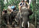 bakas-elephant